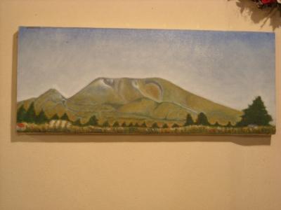 ヨシさんの浅間山