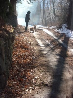 三人の散歩